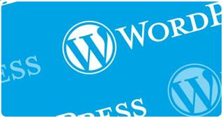 wordpress webdesign zaanstad